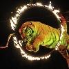 Цирки в Чапаевске