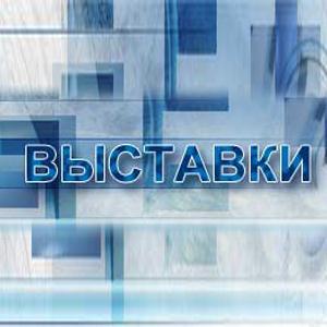 Выставки Чапаевска